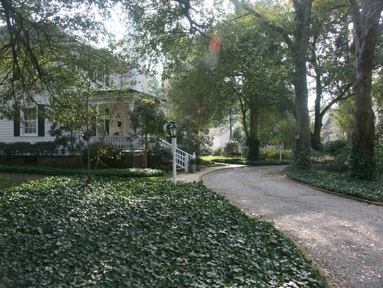 The Magnolia Inn: the front driveway