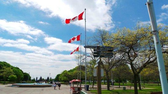 Hilton Garden Inn Toronto Downtown: Island Park