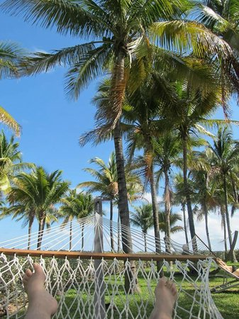 Grand Lucayan, Bahamas: chillin' in a hammock
