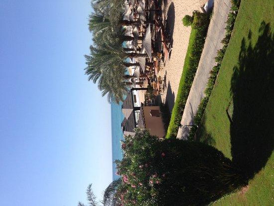 Miramar Al Aqah Beach Resort: From the balcony
