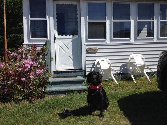 Johnson's Motel and Cottages: Ashley cottage