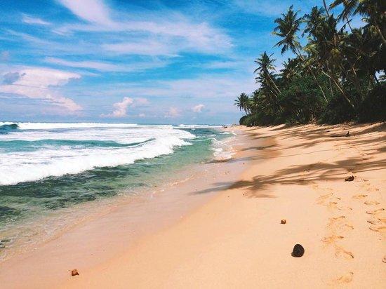 Apa Villa Thalpe : View from beach