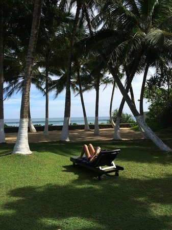 Apa Villa Thalpe : View from Saffron Villa