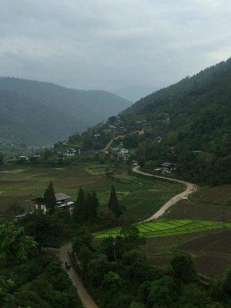 COMO Uma Punakha : View from the deck