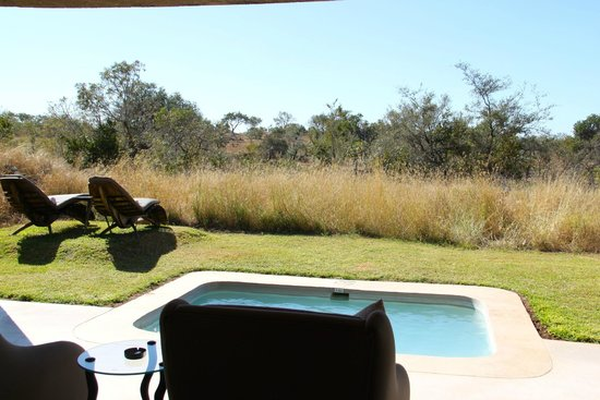 Sabi Sabi Earth Lodge: View from outdoor area