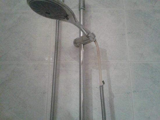 Grande Albergo Internazionale : particular of the shower