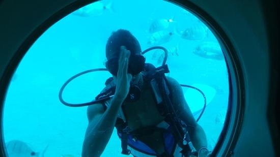 Submarine Safaris Lanzarote: diver
