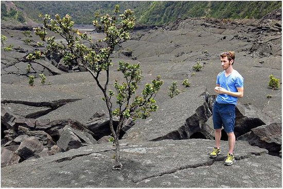 Kilauea Iki Trail: The barren nature of the crater floor is still a stunning view.