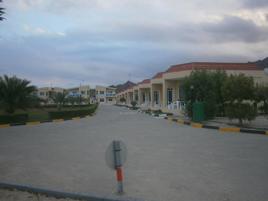Holiday Beach Motel: Территория мотеля
