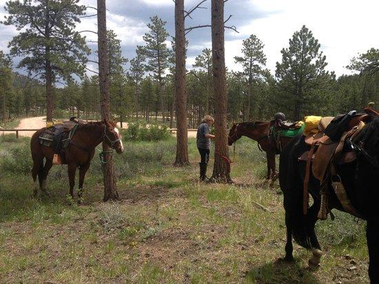 Sundance Trail Guest & Dude Ranch : lunch break