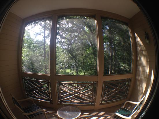 Marriott's Manor Club at Ford's Colony: A fish eye photo of the big porches