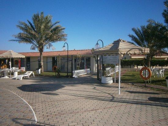 Holiday Beach Motel : Территория мотеля.