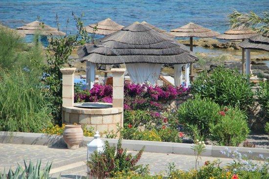 AquaGrand Exclusive Deluxe Resort: Hotel's area