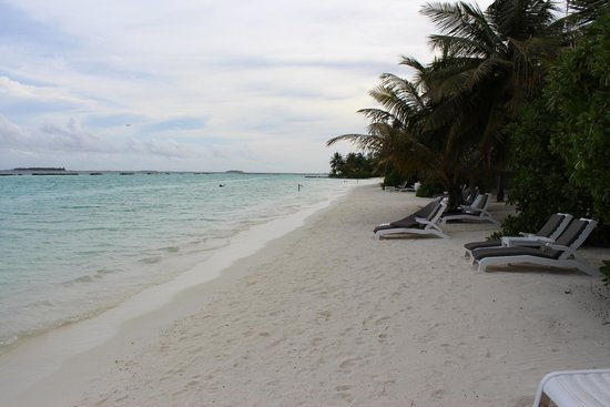 Sheraton Maldives Full Moon Resort & Spa: Beach