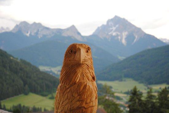 Hotel Alpen Tesitin: panorama