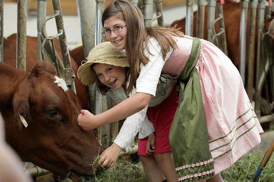 Kinderhotel Rudolfshof Vitality: Am Bauernhof