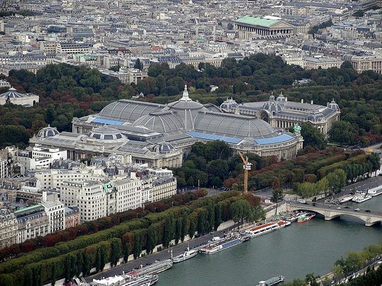 The Grand Palais and the Petit Palais seen from the Eiffel Tower
