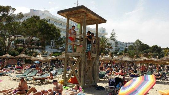 Gavimar Ariel Chico Club Resort: Cala Gran