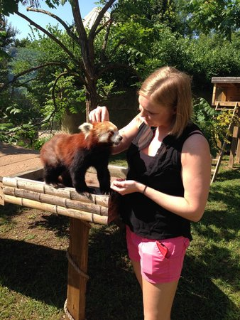 Chattanooga Zoo: Got to meet Wendy