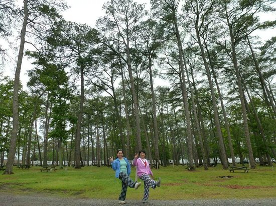 Cherrystone Family Camping Resort : strolling at the campground
