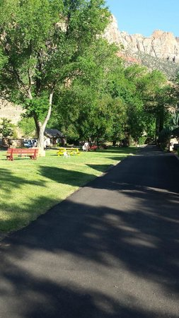 Canyon Ranch Motel: Like a Park!