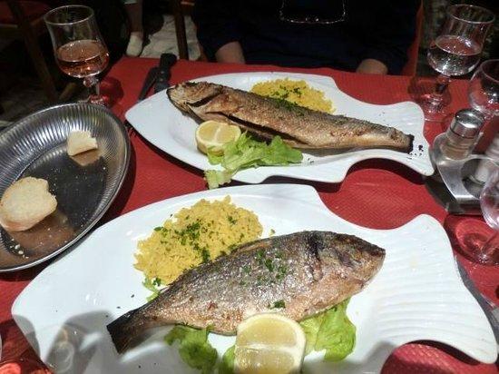Le Paradis Chez George : 15ユーロのセットのメインの魚、大きいです、単純に塩焼き