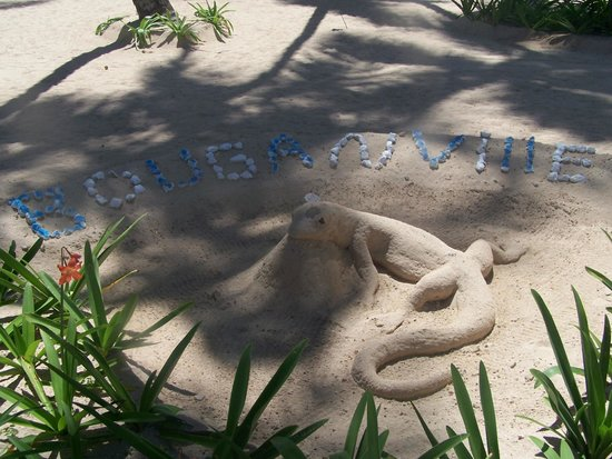 Luxury Bahia Principe Bouganville Don Pablo Collection: One of several sand sculptures on beach