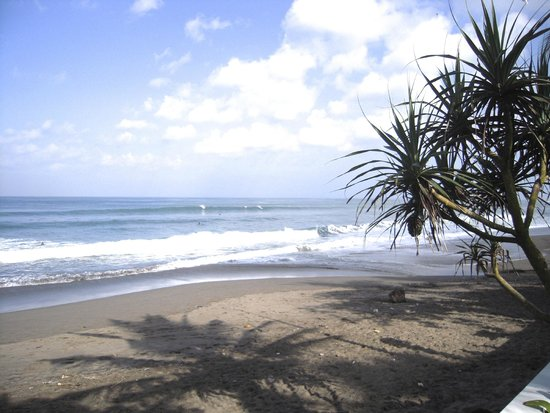 Wayan's Guest House: Berawa Beach