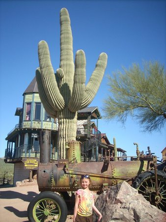 Goldfield Ghost Town : Cactus