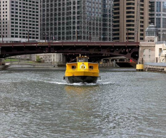 Chicago Water Taxi: Water Taxi Approaching