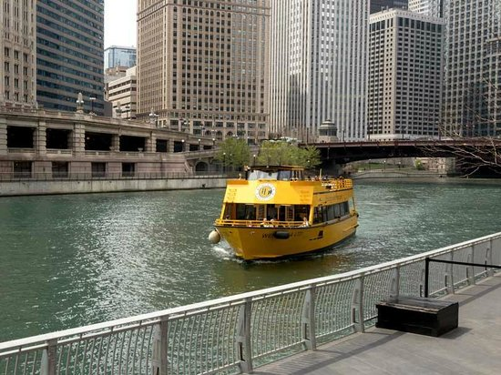 Chicago Water Taxi: Preparing To Berth