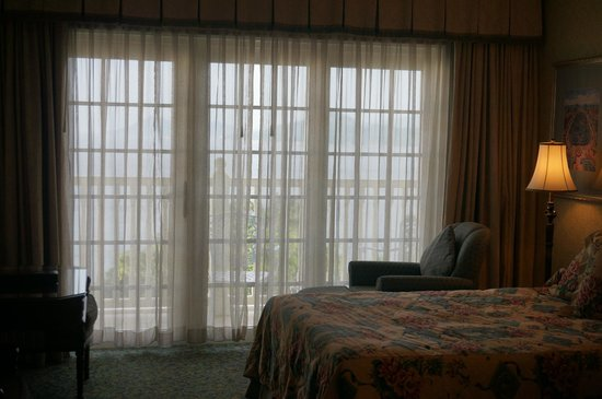 Hong Kong Disneyland Hotel : View from the room