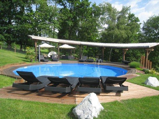 Le Clos des Chenaies : piscine commune