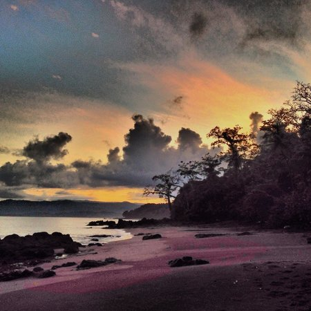 Copa de Arbol Beach and Rainforest Resort : Beach sunrise