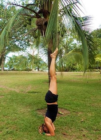 Blue Osa Yoga Retreat and Spa : yoga in paradise