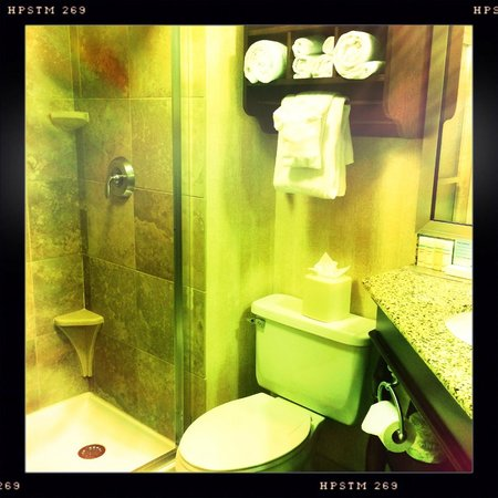 Hampton Inn Seattle Airport: Bathroom