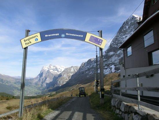 Kleine Scheidegg: ここから下ります