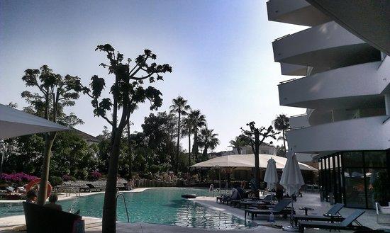 Senator Banus Spa Hotel: Piscina y Bar Chill Out
