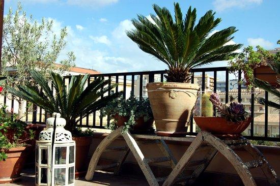 B&B Portatenea : roof terrace