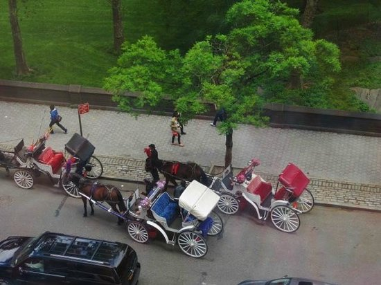 JW Marriott Essex House New York: View from room of horse drawn carriages