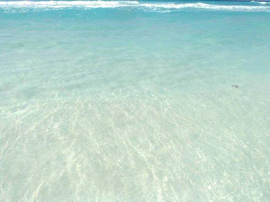 Iberostar Cancun: Crystal clear...