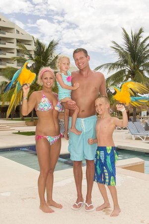 Iberostar Cancun: Parrots at the pool!