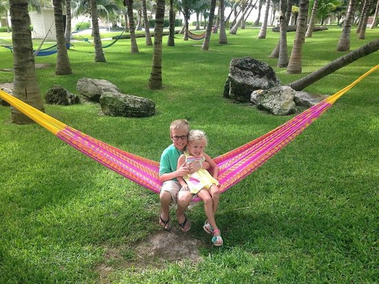 iberostar cancun  awesome hammocks  awesome hammocks    picture of iberostar cancun cancun   tripadvisor  rh   tripadvisor co za