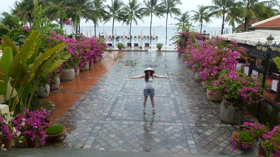 Victoria Hoi An Beach Resort & Spa: Paseo para ir a la piscina y a la playa