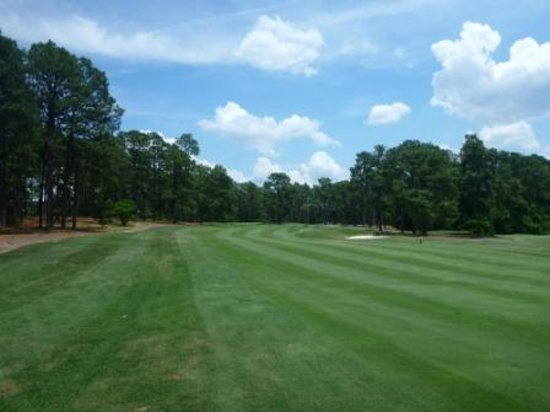 Pine Needles Resort and Country Club: Golf course