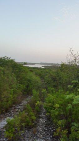 Lakeview Motel & Takeaway : View of the lake
