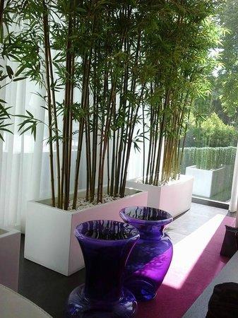 Primavera Perfume Hotel : A perfect reading area