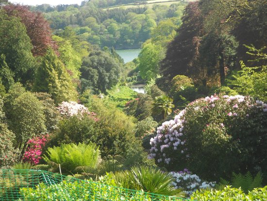 Trebah Garden : View down the valley