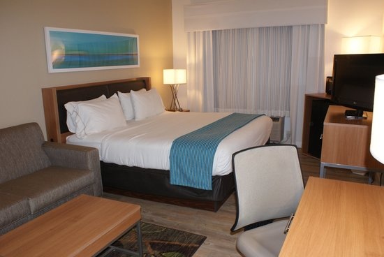 Holiday Inn Express Pittsburgh-North (Harmarville) : King Bed Guest Room