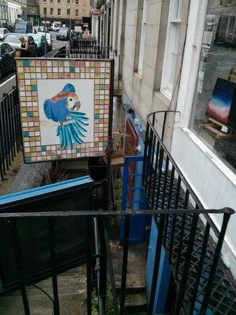 Blue Parrot Cantina